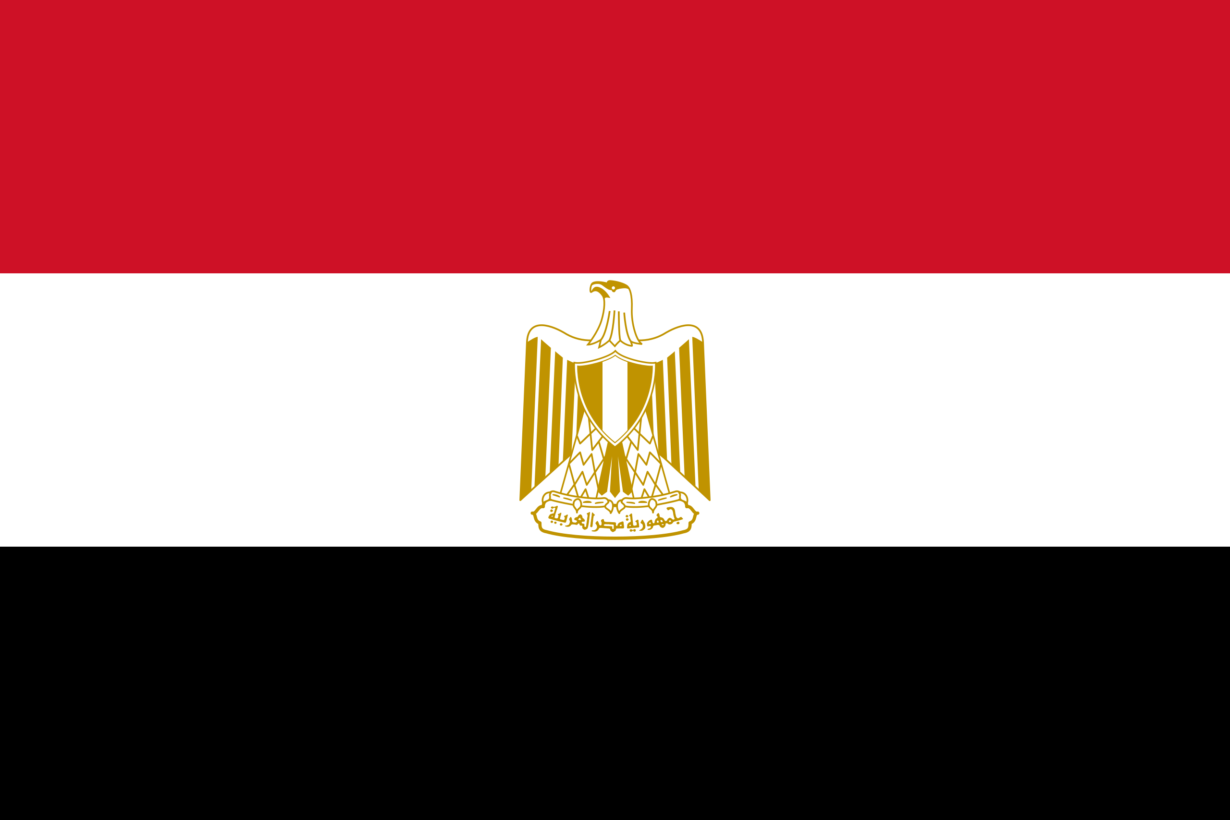 Egyptian Youth are Dissatisfied with Their Education System