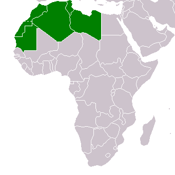 The Maghreb Integration Report 2020: Economic Partnerships as an alternative for Political Stalemate